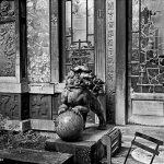 7ème arrondissement – Les jardins du cinéma La Pagode