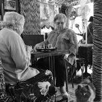 3ème arrondissement – Le petit chien du Café Le Temple