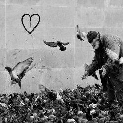 4ème arrondissement – Giuseppe, l'homme aux pigeons