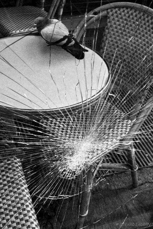 2ème arrondissement – Le pigeon en terrasse rue Montorgueil