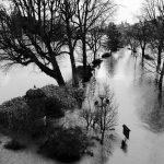 1er arrondissement – Crue de la Seine square du Vert Galant #1